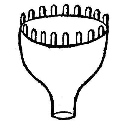 penelope-moule-turc