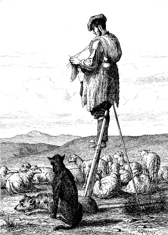 landes-shepherd